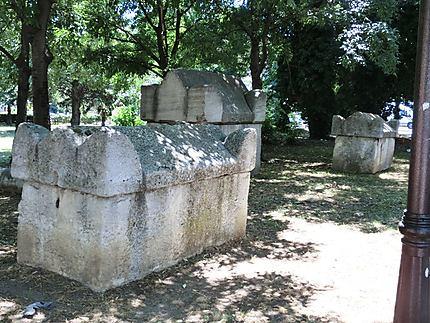Vieux cercueils