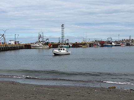 Port de pêche à Cloridorme