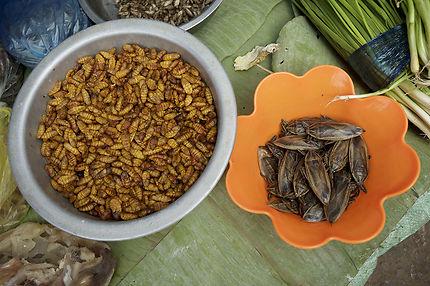 Larves et insectes sur un marché lao