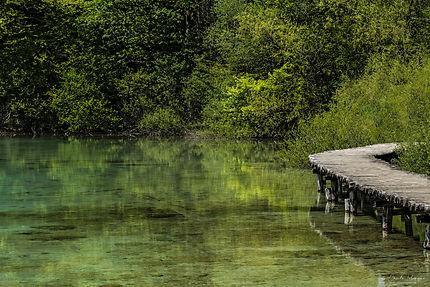 Ponton du lac de Plitvice