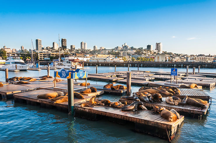 San Francisco au bord de l'eau : Fisherman's Wharf et île d'Alcatraz