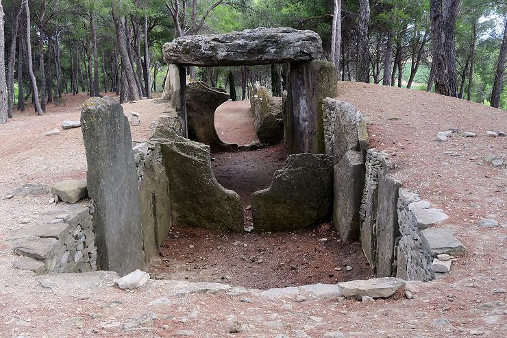 Garrigue, vignobles et dolmens du Midi