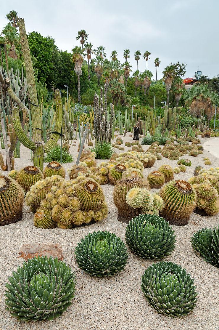 Poble sec et le jardin des cactus de Barcelone