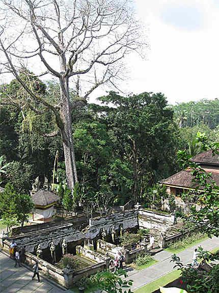 Arrivée sur Goa Gajah, la grotte de l'éléphant