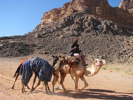Désert Wadi Rum