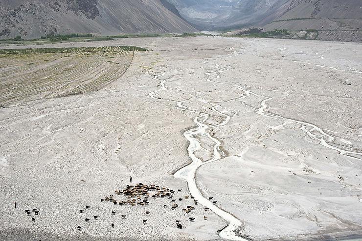 Bergères du côté afghan de la vallée du Wakhan, Tadjikistan