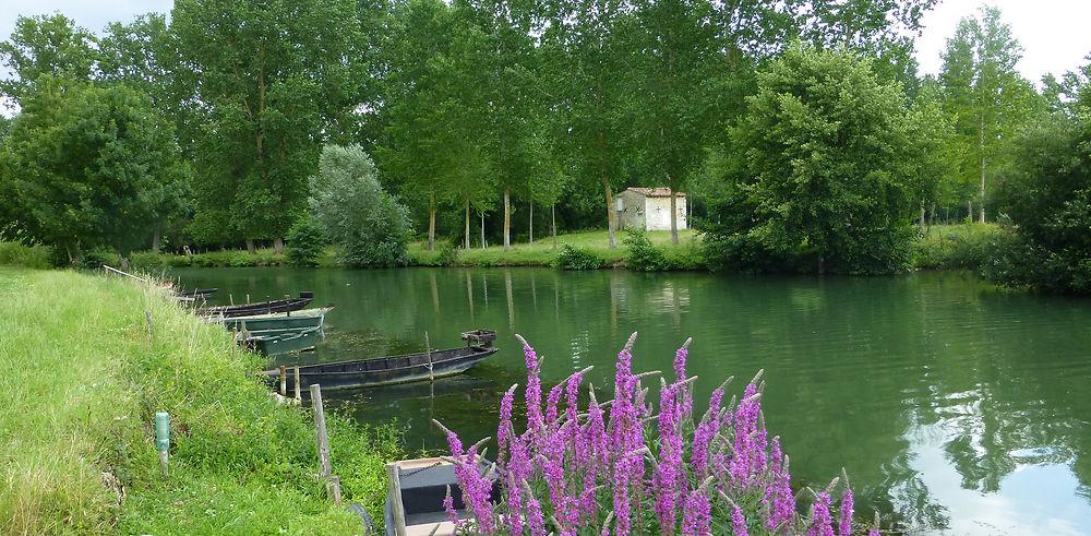 Une semaine dans le Marais Poitevin