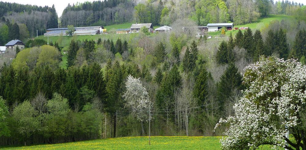 Carnet de voyage, une semaine dans les Alpes au printemps