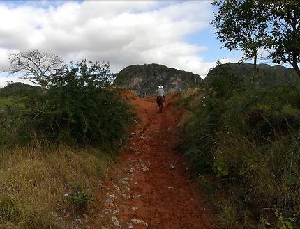 En chemin, vallée de Viñales