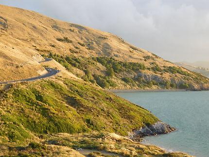 Route côtière néo-zélandaise à Oamaru