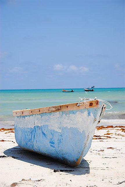 Plage de pêcheurs à Socotra