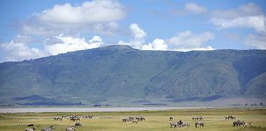 Sur Mesure: Safaris en tente en Tanzanie