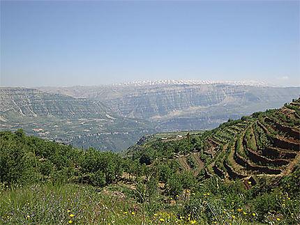 Montagnes du Jebel Tannourine
