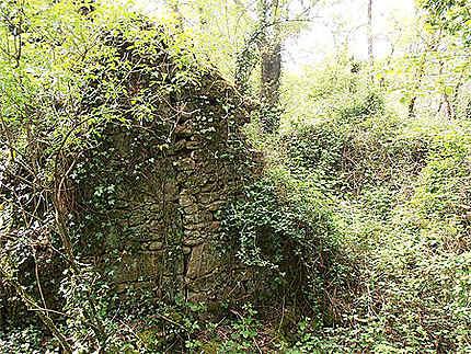 """Ruines du """"Moulin de l'Enfer""""  (Rochard, Mortagne-sur-Sèvre)"""