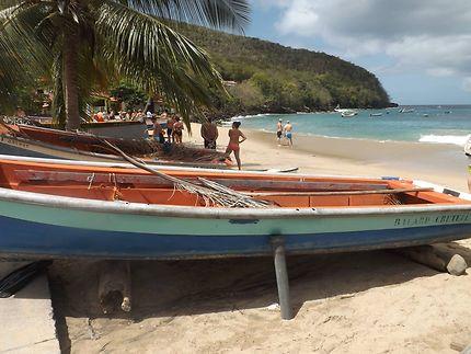 Balade à Anse Noire, Martinique