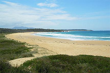 Cutagee Beach