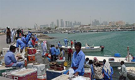 Fish market Doha