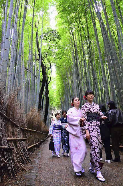 La forêt de bamboue de Arashiyama
