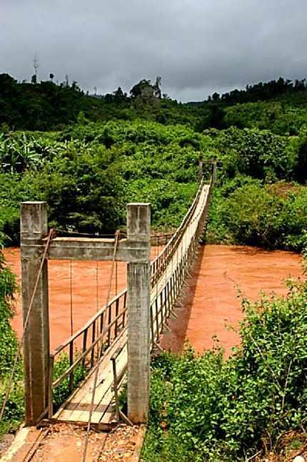 Pont perdu loin dans la forêt