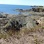 Grande marée les roches se decouvrent