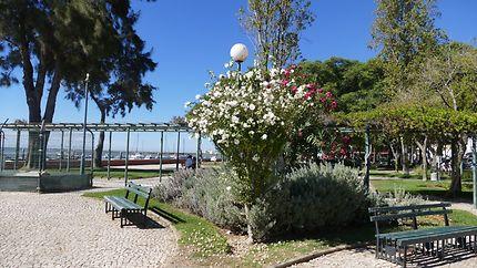 Parc et port d'Olhão