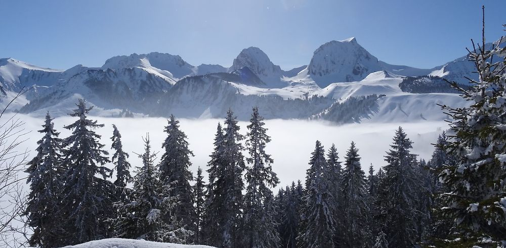 Une semaine hivernale en Suisse