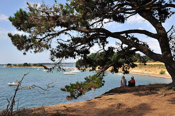 Le golfe du Morbihan, d'île en île
