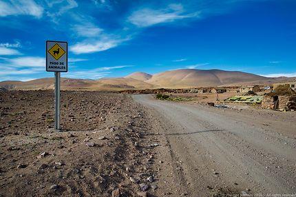 Désert bolivien