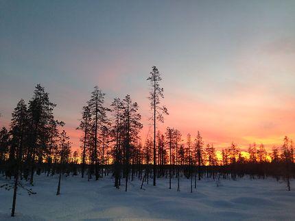 Ciel d'hiver en Laponie finlandaise