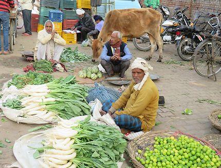 Marché à Varanasi, Inde