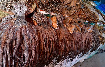 Poulpes séchés au marché de Stone Town