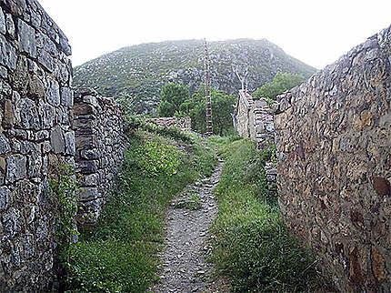 montagne-de-kabylie - Photo