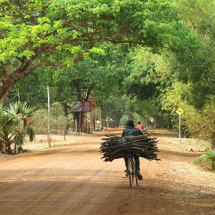 Transport en vélo à Siem Reap, Cambodge