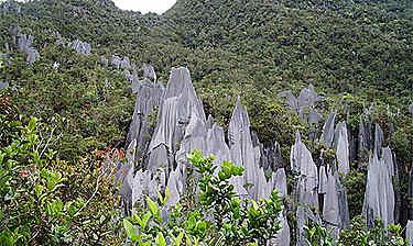 Gunung Mulu National Park (Sarawak)