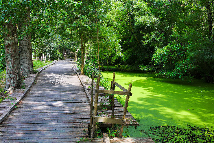 Vallée du Loir, Perche et Marais poitevin : la France verte