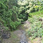 Zoo du Carbet