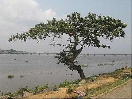 Berge du Wouri à Douala