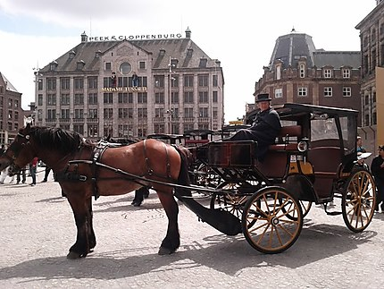 Carrosse Amsterdam !