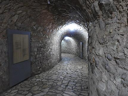 Copan - Musée de sculptures - entrée