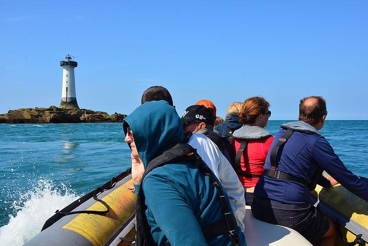 À la recherche des dauphins