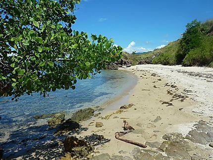 La plage de Watulajar les collines environnantes