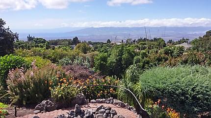 Maui Upcountry - vue de Kula Lodge