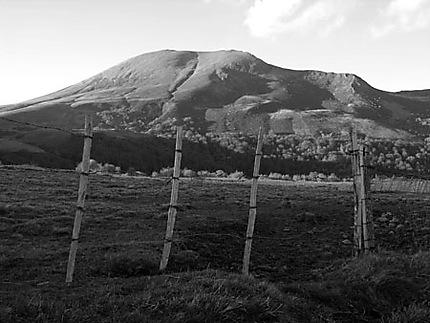 Colline en Auvergne