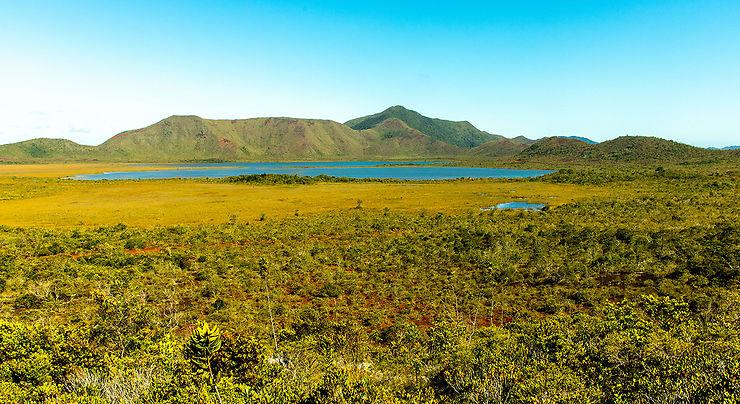 Maquis minier, plaine des lacs