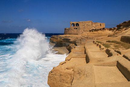Damier maltais