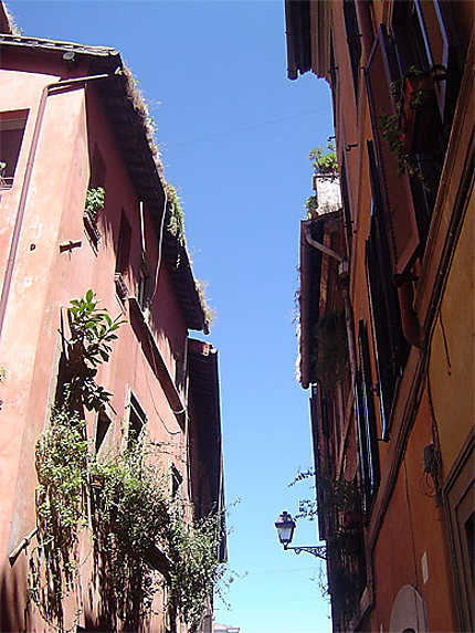 Ruelle du Trastevere