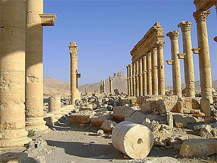 Palmyre ville dorée