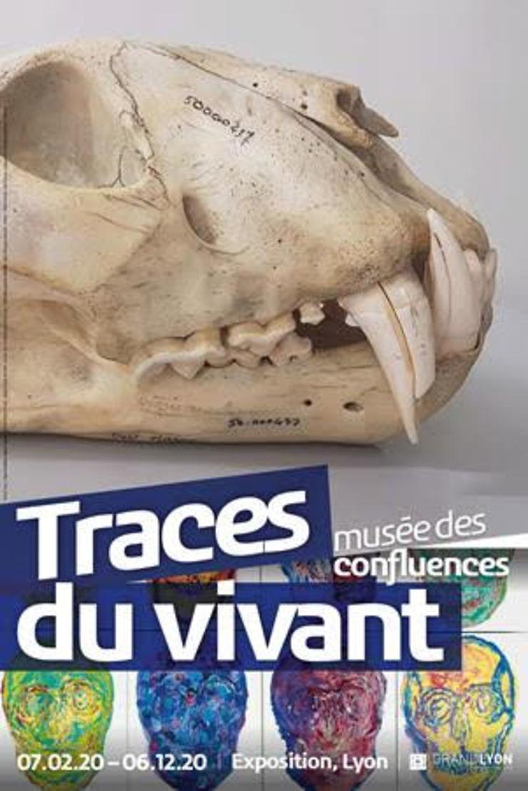 « Traces du vivant » au musée des Confluences à Lyon