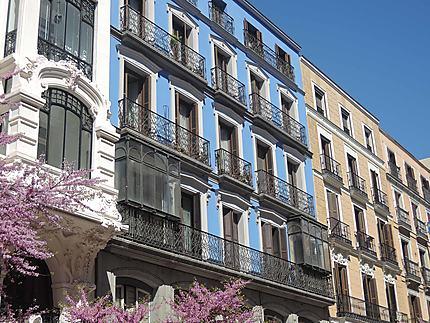 Calle Mayor, au printemps