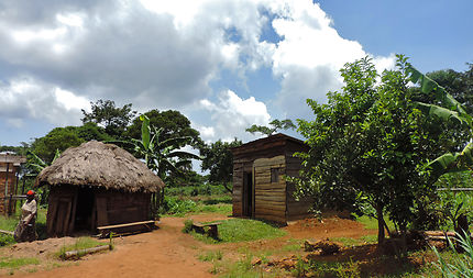 Lost in Uganda